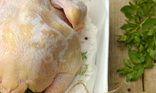 Sóágyon csirke